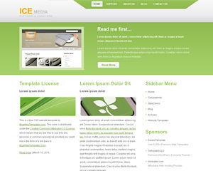 IceMedia Website Template