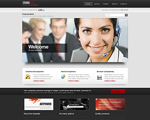 Business website templates bluewebtemplates silverstudio premium template flashek