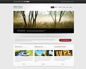 Free Website Templates, Web Templates, Templates   BlueWebTemplates